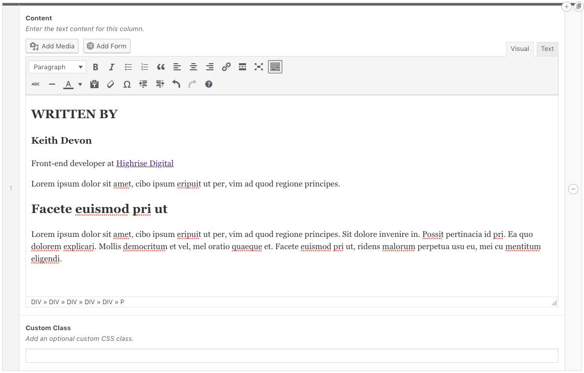 Example WordPress editor text